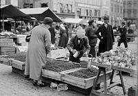 Torghandel med försäljning av lingon på Kornhamnstorg.