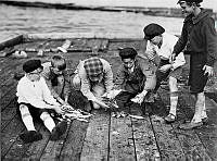 Några pojkar går igenom fiskefångsten på en brygga vid Slussen.