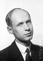 Porträtt av man, Brömsen.
